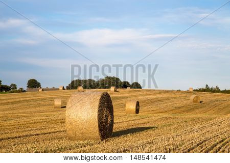 Hay bales after harvest on a field on the countryside in Northern Zealand, Denmark