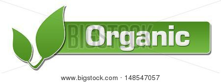Organic text written over green background with leaf.