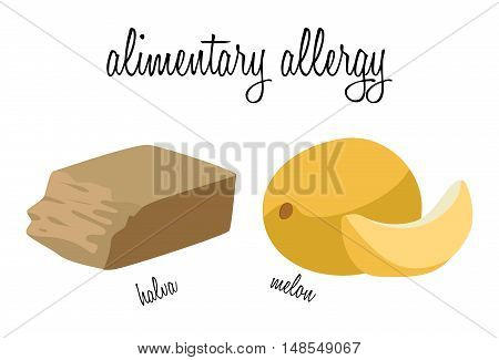 Halva and melon - foods that cause food allergies. For your convenience each significant element is in a separate layer. Eps 10