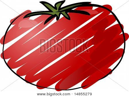 Sketch of a tomato. Hand-drawn lineart look illustration