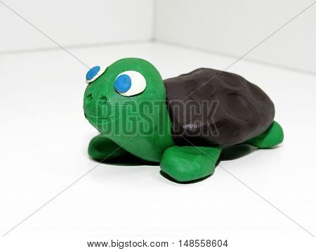 Green Small Turtle