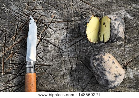 Baked Potatoes In The Campaign
