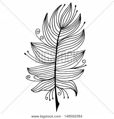 Very high quality original feather with pattern for coloring