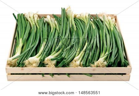 Fresh spring onion in a box vegetables