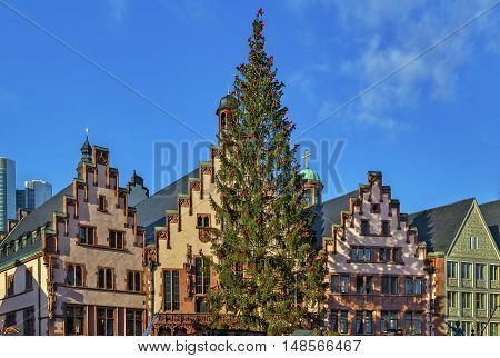 Christmas tree in front of the town hall on Romerberg square Frankfurt Germany