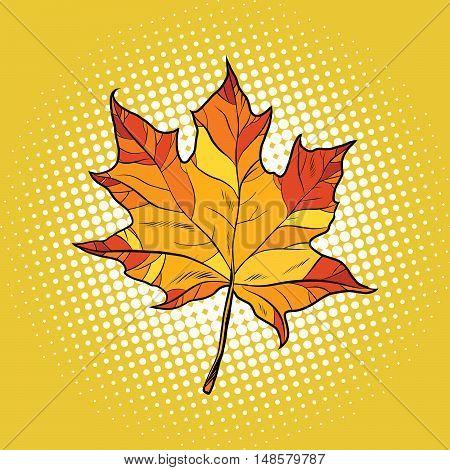 Red maple leaf in autumn, pop art retro vector illustration