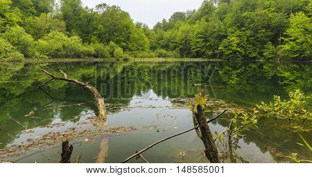 Lake Ambil Shabran Siyazan Azerbaijan nature background