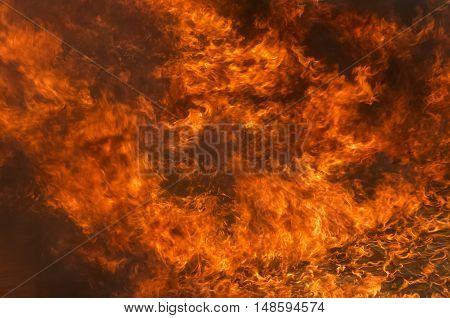 closeup blaze fire flame texture and background