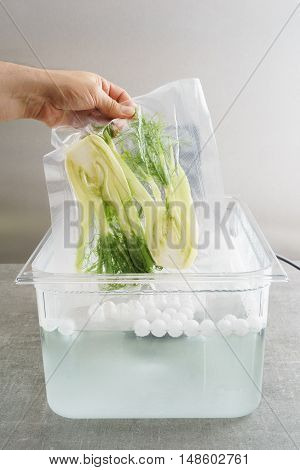 Sous vide cooking of fennel in a sous vide precision immersion cooker with water and water balls