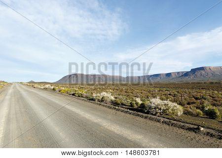 Grey Colored Road In Tankwa Karoo