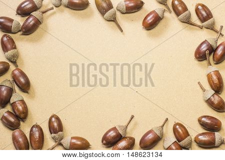 Acorn decorated frame on beige paper background