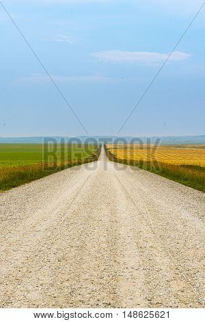 Gravel road through farmland in rural Southern Alberta Canada