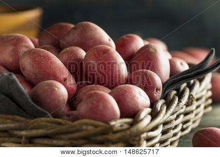 Raw Organic Red Potatoes