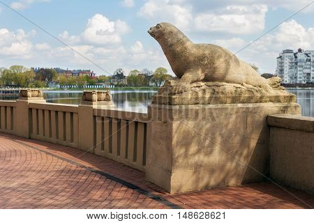 RUSSIA KALININGRAD - APRIL 29 2016: Ancient sculpture of a seal on the Upper Pond in Kaliningrad. The sculpture is part of a complex of marine animals and sculptures was installed in 1913. Until 1945 the city belonged to Germany and was called Koenigsberg