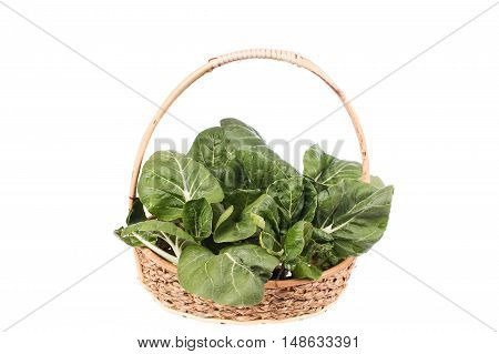 green bok choy vegetable in basket on white background
