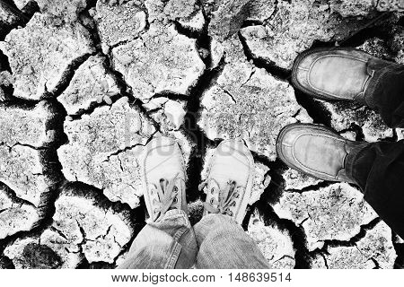 Land with dry and cracked ground. Desert. lay flat