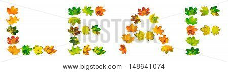 Word Leaf Composed Of Autumn Maple Leafs