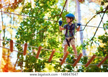 Young Boy Passing The Cable Route High Among Trees, Extreme Sport In Adventure Park