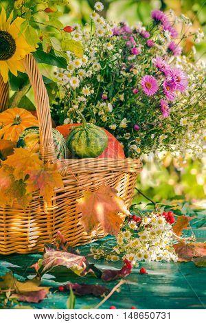 Fall Basket Autumn Harvest Garden Pumpkin Fruits Colorful Flowers Plants