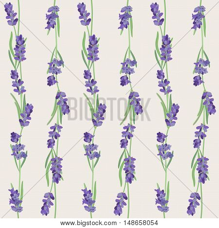 Bright vector seamless background with sprigs of lavender.