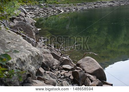 riflessi del bosco nell'acqua quieta del lago Palo