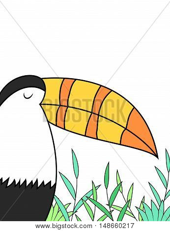 Vector cartoon toucan design on white background