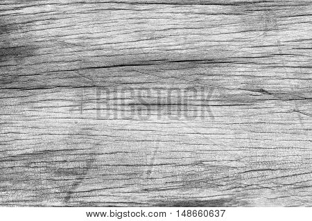 Wood Background Black And White Soft Wood Surface Texture High Quality Close Up.