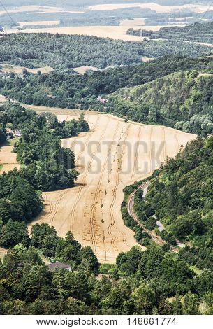 Fields and forests. Cultivated land. Agricultural landscape. Vertical composition.