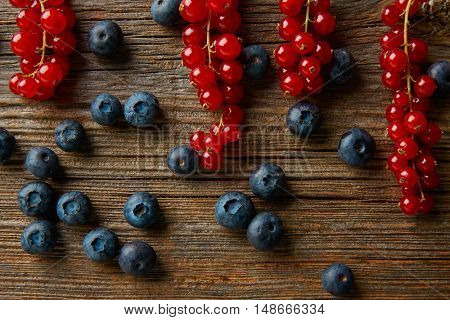 Berries mix on wooden board blueberries and red currants