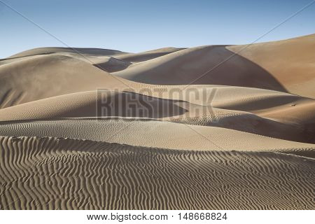 Sand dunes in Liwa desert in Aby Dhabi UAE at sunrise