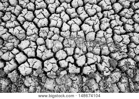 Land with dry and cracked ground. Desert.