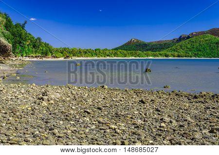 A beautiful beach in tropical Queensland, Australia.