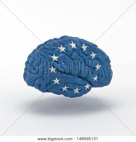 European Union Flag on Human brain. 3D illustration.