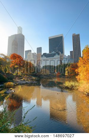 Central Park with morning bright sunlight and urban skyscrapers in Autumn in New York City.