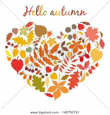 The heart of the autumn colorful leaves. Postcard