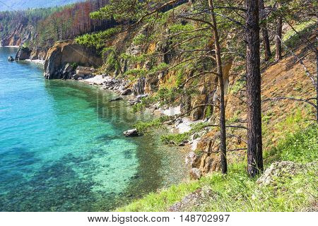 The pine-covered shore of lake Baikal stretches far beyond the horizon.