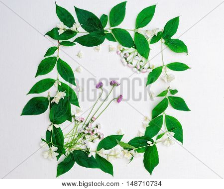 Wreath Of Jasmine Flowers And Leaves And Chamomile On White