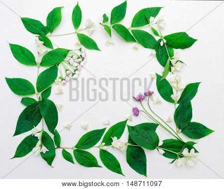Wreath With Jasmine Flowers And Leaves And Chamomile