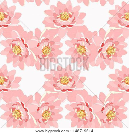 Seamless Pattern Lotus Flower Pink Close Up On A White Background. Vector Illustration