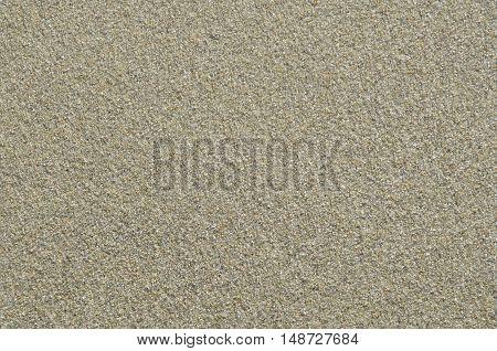 Coast beach sand surface background. Naturel Environment.