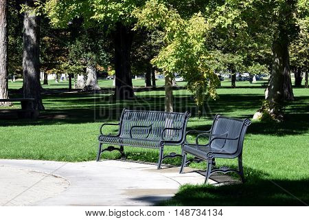 Benches in the park surrounded with trees and flower beds