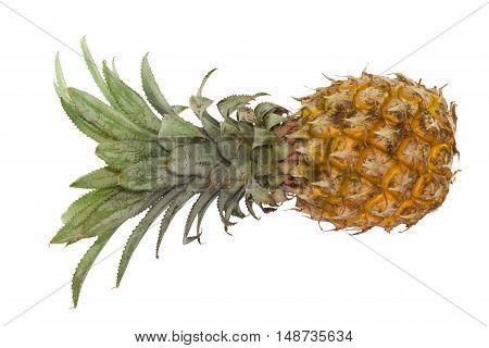 Single yellow Ripe Pineapple on white backgroup