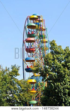 Ferris wheel in a green city park