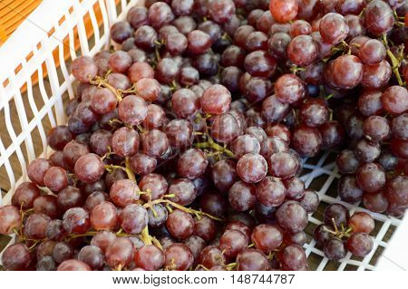close up fresh sweet red Grape in market