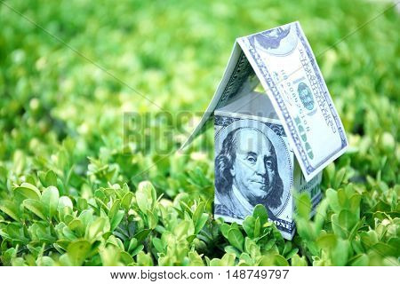 Money house on green grass, closeup