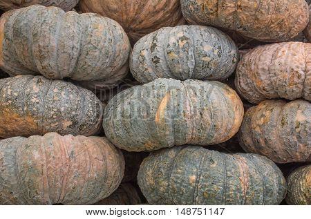 Close up horizontal photo of pile of pumpkins placed for sale.