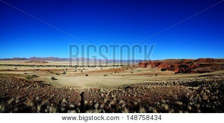 Petrified dunes at the sunset in Namib desert