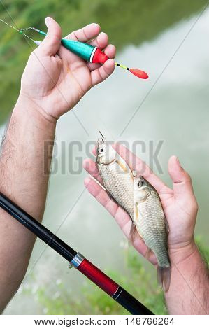 fisherman hands holding two fish and fishing tackle