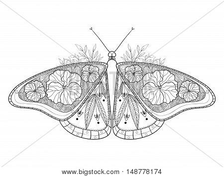 Butterfly coloring book vector illustration. Anti-stress coloring for adult. Zentangle style. Black and white lines. Lace pattern