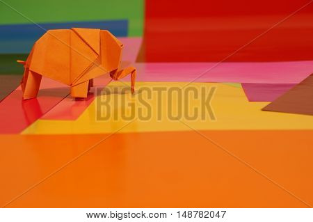 Origami elephant out of paper isolated on a colored background